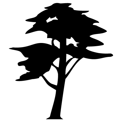 avatar de burmecian_drakoon